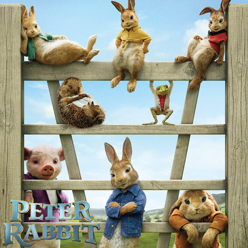 Peter-Rabbit-800x800
