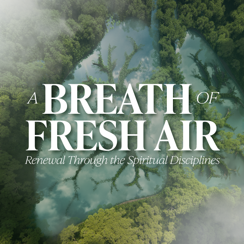 Breathe-of-Fresh-Air-800x800