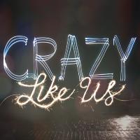 Crazy-Like-Us-200x200